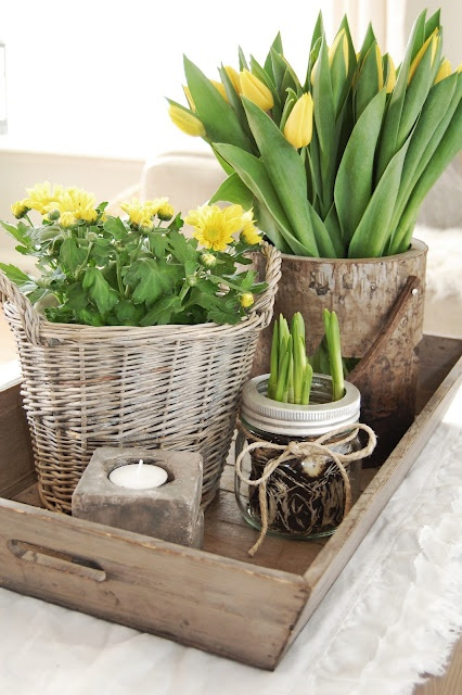 Spring (10)