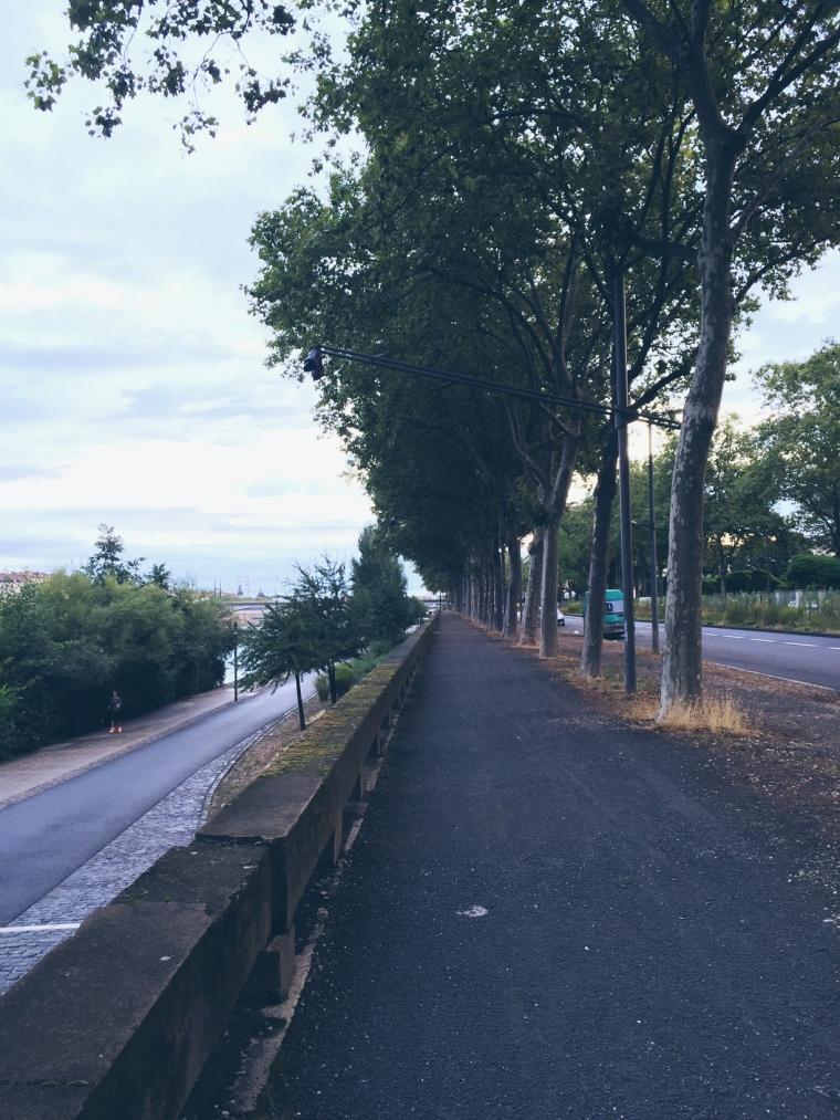 Lyon-Quais-Rhone2